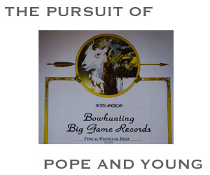 Pope and Young searchp