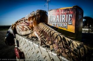 102513 - pheasant prairie storm