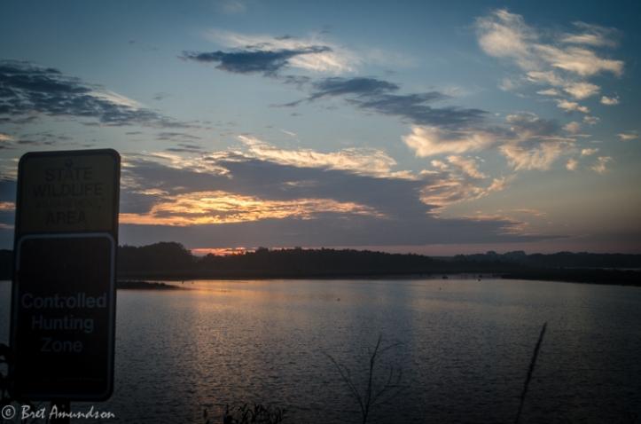 82813 - lqp sunrise deer ducks_-2