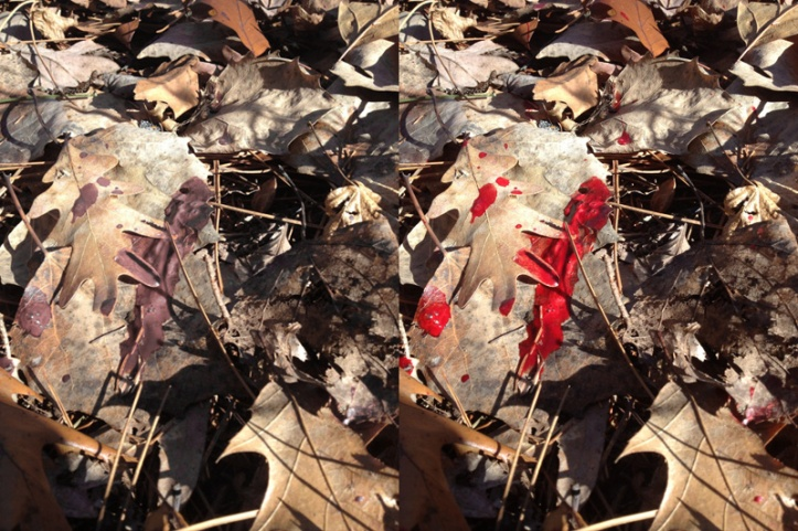 At first glance, I see the picture on the left, you see the picture on the right.  After focusing on it, then the red finally shows up.