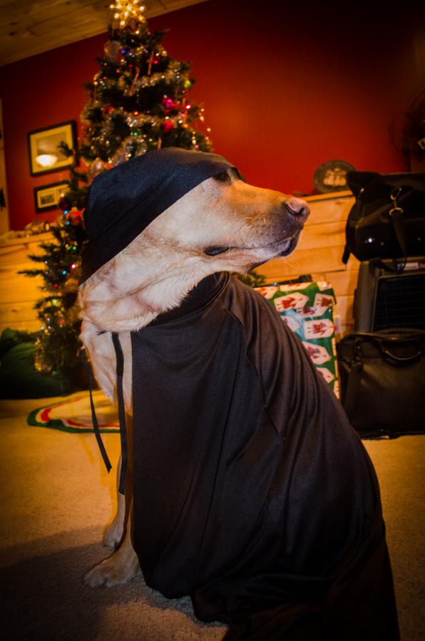 Mika and her Christmas present: A Superhero Cape! Even if she looks more like a ninja now.