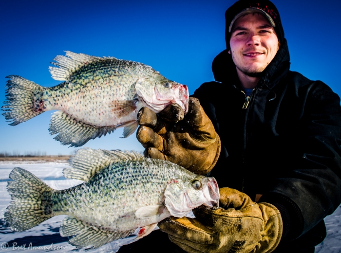 """Tony Crotty with a couple 12"""" crappies"""