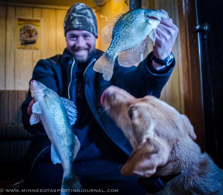 "Bret and his lab, Mika, with a 16"" walleye and a 12.5"" crappie."