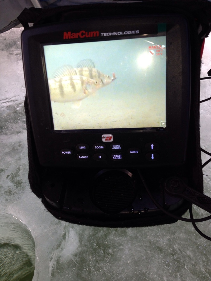 A camera works great if you have excellent water clarity.