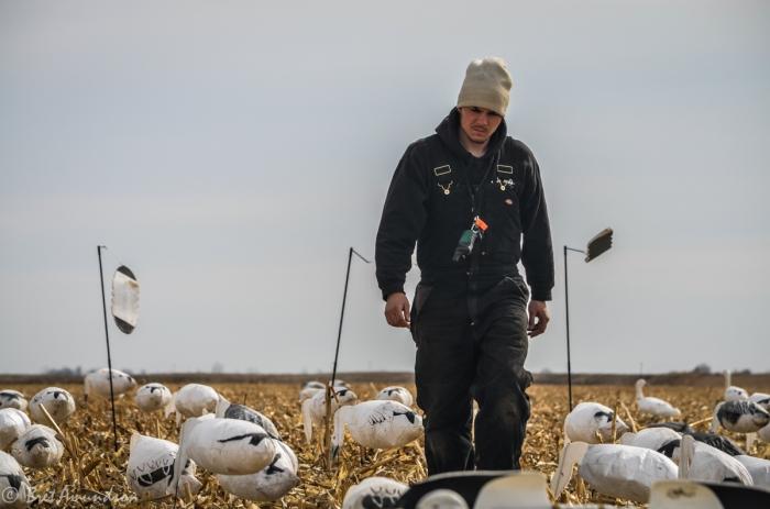 31714 - snow goose sd day 3-5
