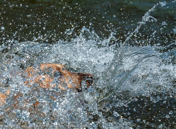 7214 - mika water work-9