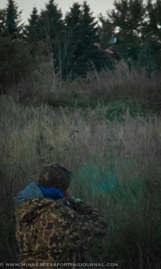 91314 - dan shooting teal-3
