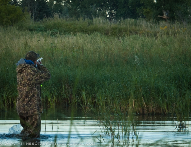 91314 - dan shooting teal