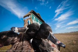 101614 - duck hunt family-2