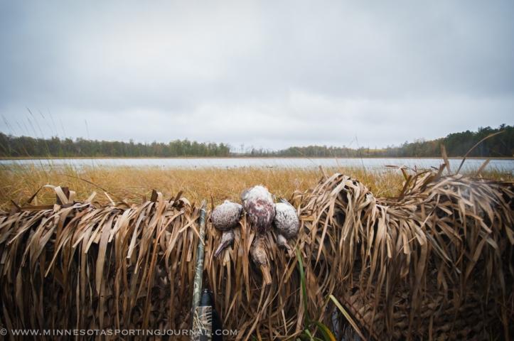 10314 - duck hunt-5