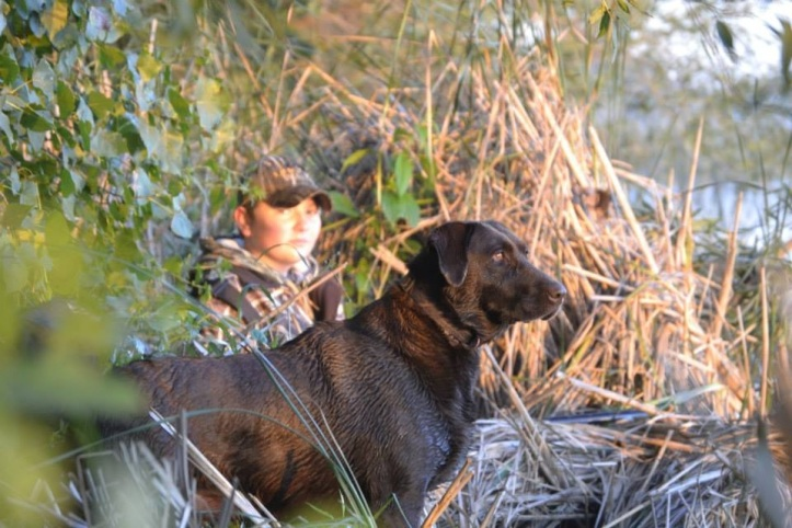 Jana Stadheim sent in this: A picture of my son Kolby hunting on youth waterfowl day 2014.