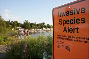 This sign warns boaters of infested waters.  Photo courtesy of the DNR.
