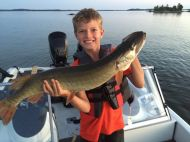 muskie sunset lodge nw angle summer 2015